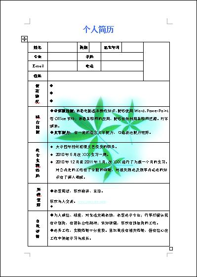 2013年彩色版精简个人简历表图片
