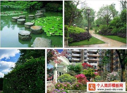 ◆求职意向: 园林/景观设计师